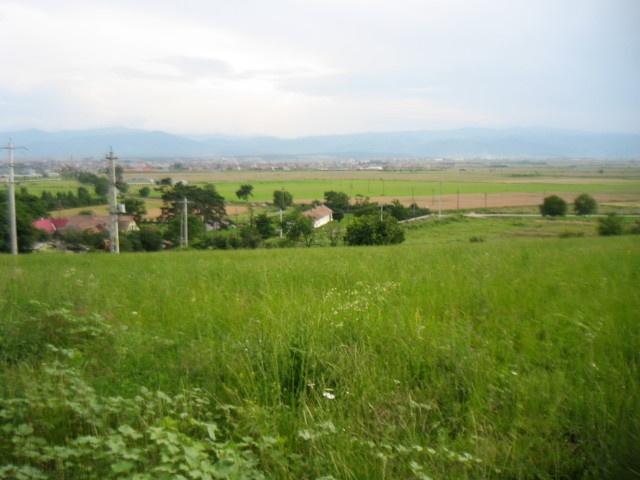 Curtesti,Botosani,Romania,Teren,1923