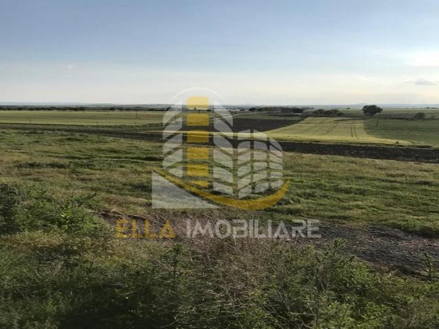Palazu Mare, Constanta, Constanta, Romania, ,Teren,De vanzare,2415