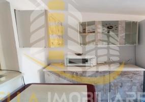 Zona Carrefour, Botosani, Botosani, Romania, 1 Bedroom Bedrooms, 1 Room Rooms,1 BathroomBathrooms,Garsoniera,De vanzare,3272